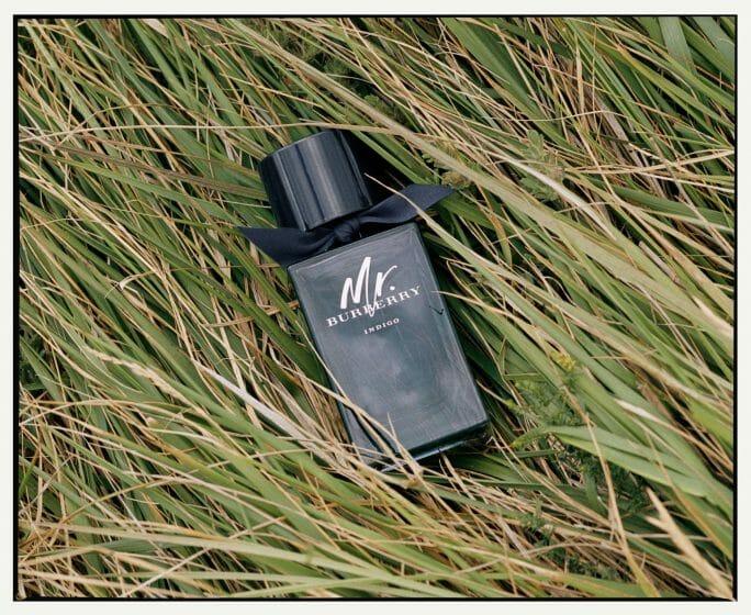 Fragrances With Incredible Sillage Mr Burberry Indigo